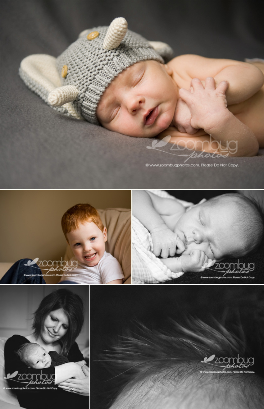 newborn-photographer-lexington-ky